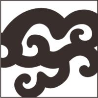 Medium Curly Texture
